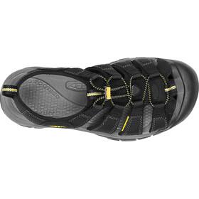 Keen Newport H2 Sandals Men Black